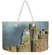 Solitary Gull Weekender Tote Bag