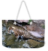 Some Cats Like Water Weekender Tote Bag