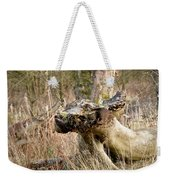 Something About A Dragon. Weekender Tote Bag