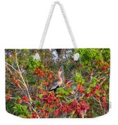 Song Of The Anhinga Weekender Tote Bag