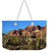 Sonoran Cacti Everywhere Weekender Tote Bag
