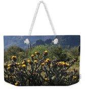 Sonoran Desert Cholla  Weekender Tote Bag
