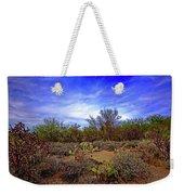 Sonoran Desert H1819 Weekender Tote Bag