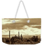 Sonoran Desert Mountains And Cactus Near Phoenix Weekender Tote Bag