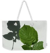 Sophisticated Shadows - Glossy Hazelnut Leaves On White Stucco - Vertical View Upwards Left Weekender Tote Bag