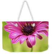 Soprano On A Brilliant Spring Day 2 Weekender Tote Bag