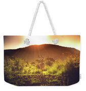 South Africa At Its Finest  Weekender Tote Bag