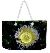 South African Flower 1 Weekender Tote Bag