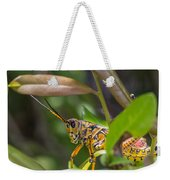 Southeastern Lubber Grasshopper Weekender Tote Bag