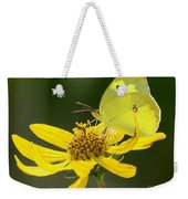 Southern Dogface Butterfly Weekender Tote Bag