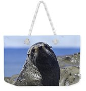 Southern Fur Seal Weekender Tote Bag