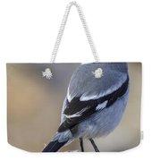 Southern Grey Shrike-- . Weekender Tote Bag