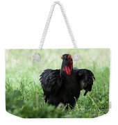 Southern Ground Hornbill Eating An Insect In Tarangire Weekender Tote Bag