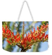 Southwest Ocotillo Bloom Weekender Tote Bag