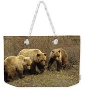 Sow Grizzly With Cubs Weekender Tote Bag