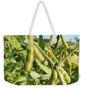 Soybeans In Autumn Weekender Tote Bag