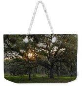 Spanish Moss During Sunset Weekender Tote Bag