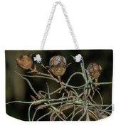 Spanish Moss On Azalea  Weekender Tote Bag