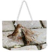 Sparrow Feeding Fledgelings Weekender Tote Bag