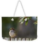 Sparrow In Colonial Williamsburg Weekender Tote Bag