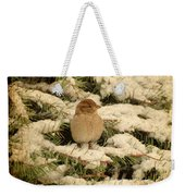 Sparrow In Winter II - Textured Weekender Tote Bag
