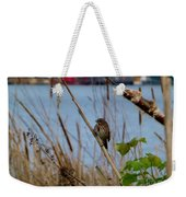 Sparrow On The Cattails Weekender Tote Bag