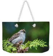 Sparrow With Lunch Weekender Tote Bag