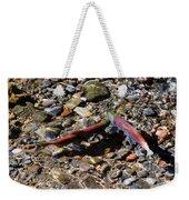 Spawning Salmon - Odell Lake Oregon Weekender Tote Bag