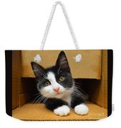 Special Delivery Tuxedo Kitten Weekender Tote Bag