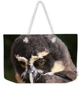 Spectacled Owl Portrait 2 Weekender Tote Bag
