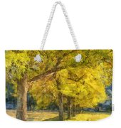 Spectacular  Fall Foliage Pencil  Weekender Tote Bag