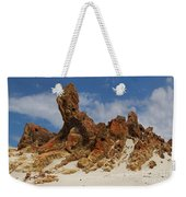 Sphinx Of South Australia Weekender Tote Bag