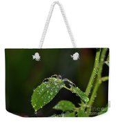 Spider And The Shower Weekender Tote Bag