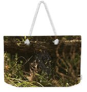Spiders Web In Sunlight In Peters Canyon Weekender Tote Bag