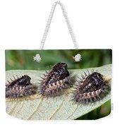 Spiky Beetle Cases Weekender Tote Bag