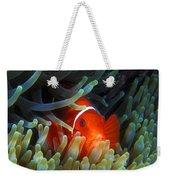 Spinecheek Anemonefish, Great Barrier Reef Weekender Tote Bag