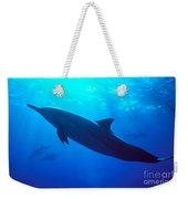 Spinner Dolphin Weekender Tote Bag