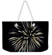 Spiny Aster Weekender Tote Bag by Sally Sperry