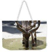 Spiral Horned Antelope Drinking Weekender Tote Bag