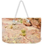 Splash Of Color In Valley Of Fire's Wash 3 Weekender Tote Bag