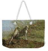 Spotted Cats Weekender Tote Bag