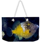 Spotted Filefish Weekender Tote Bag