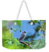 Spotted Flycatcher Muscicapa Striata .  Weekender Tote Bag