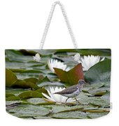 Spotted Sandpiper And Lilies Weekender Tote Bag