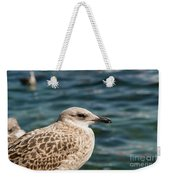 Spotted Seagull Weekender Tote Bag