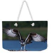 Spread Your Wings Weekender Tote Bag by Cindy Lark Hartman