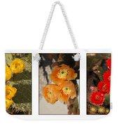 Spring - Desert Style Weekender Tote Bag