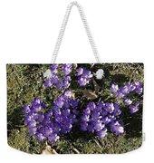 Spring 3 Weekender Tote Bag