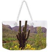 Spring Along Salt River Weekender Tote Bag
