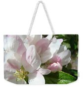 Spring Apple Blossoms Art Prints Apple Tree Baslee Troutman Weekender Tote Bag